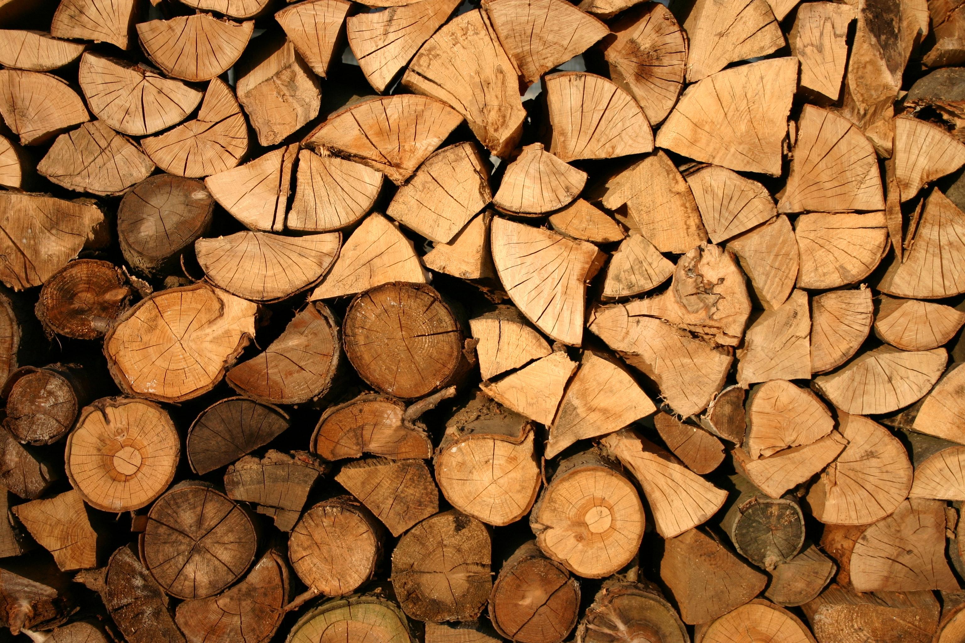 abstract-bark-cut-128639