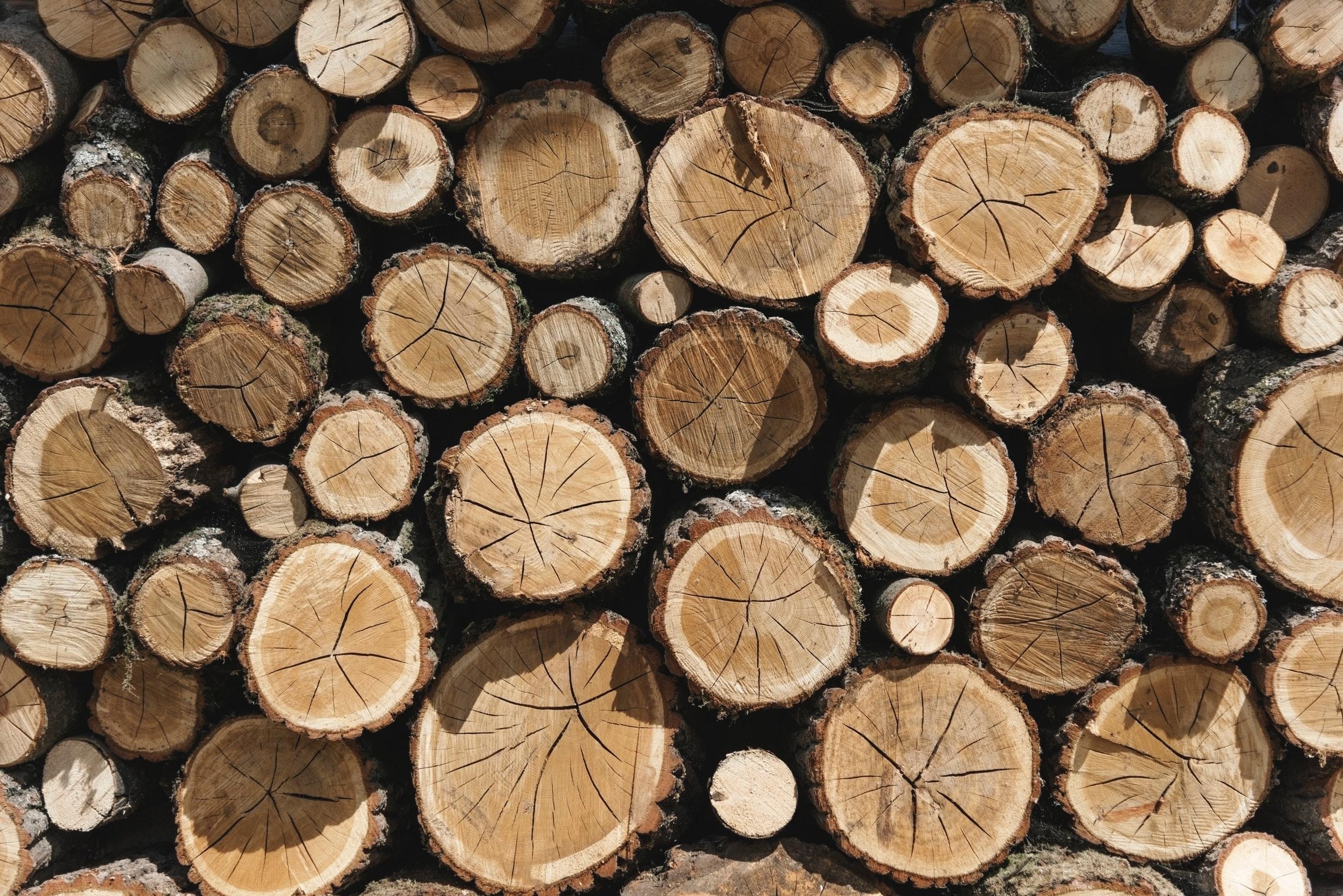 chopped-chopped-wood-cut-935866